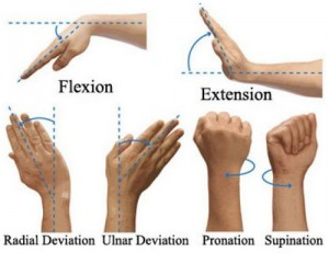 Carpal Tunnel Syndrome exercises pictures